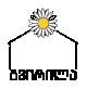 logo_ch_male